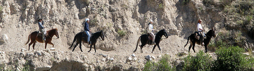 Horseback Riding In The Colca Valley