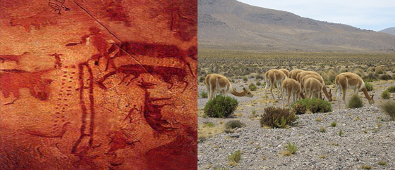 Sumbay Paleolithic Picture in Peru - Pampas Cañahuas Reeserve in Arequipa